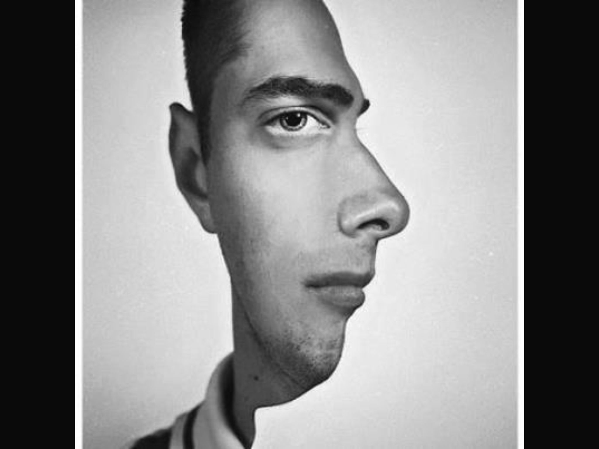 faces optical illusions illusion funny two