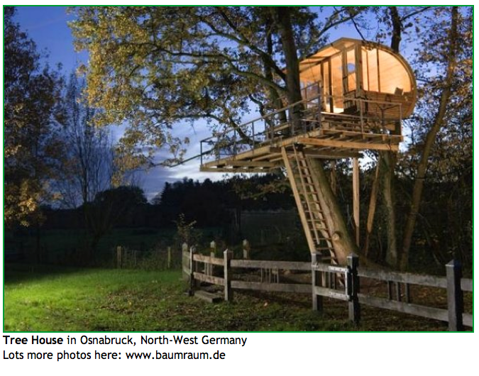 kids tree house for sale. Interesting For Architecture Cool Tree House Houses Kits Build Treehouse Sale Playhouses  Kids Pictures Adult Wooden Staircase Lighting Trees Scratching Posts Cats Top 8  In For S