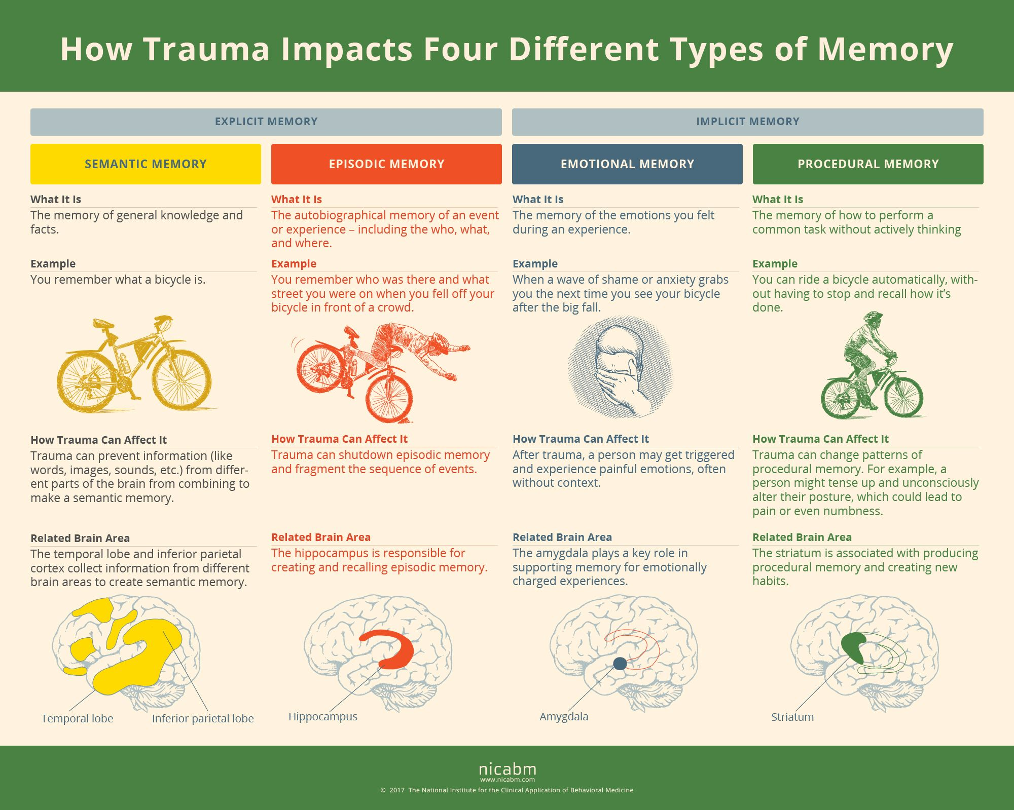 How Trauma Can Impact 4 Types Of Memory Infographic