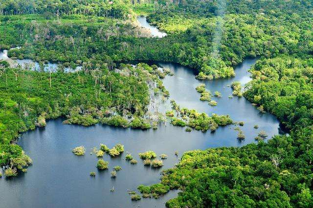 1 3 The Amazon Rainforest Also Known In English As Amazonia Or