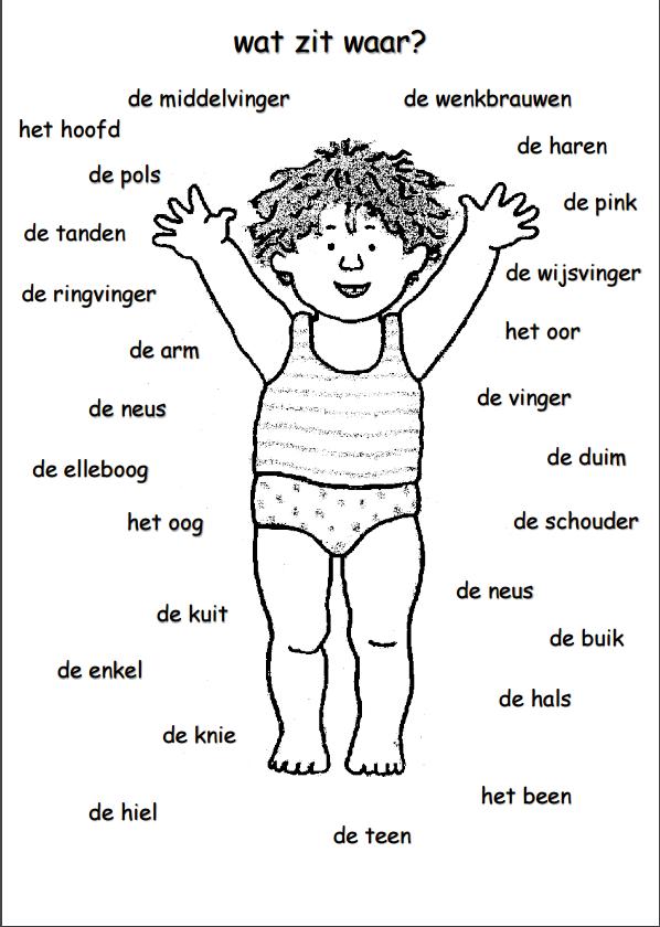 lichaamsdelen jongen met lidwoord lichaam thema