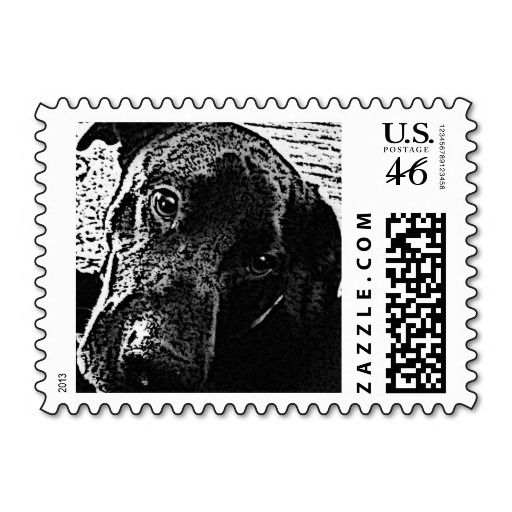 Black Dog Postage Stamp-My baby, he's a star. A stamp star, but a star nonetheless!! <3