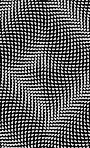 A Geometric illusions