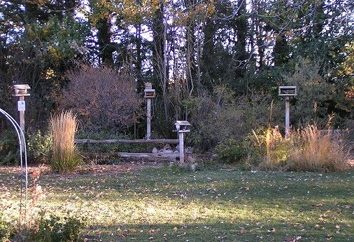 Charmant Backyard Bird Habitat Certification » Photo Gallery Backyard