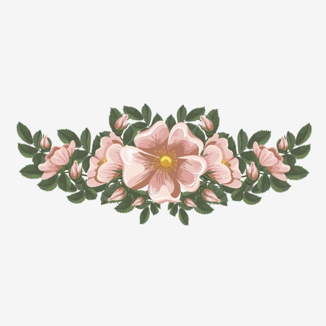 Rangkaian Bunga Png