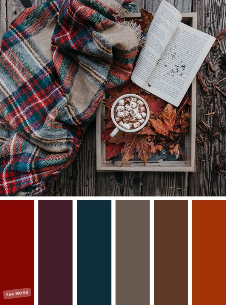 59 Pretty Autumn Color Schemes - Blanket Marshmallow and book Cozy Autumn