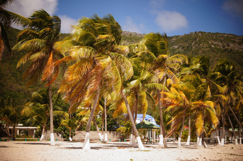 La Désirade.  Guadeloupe.