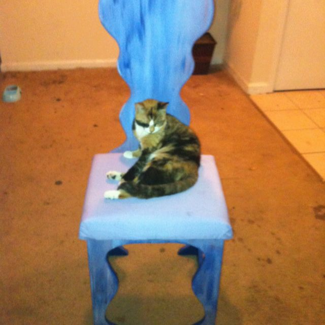 Yes the cat is cute but my best friend made this chair and I thought it was awesome!