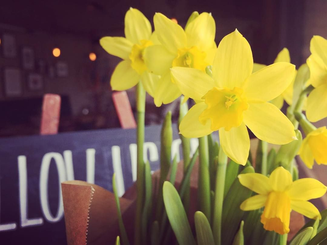 SPRING TIME!  It's nearly beach weather - we'll help you get fit for the beach with brunch from #spokeandstringerkitchen  #brunch #spokeandstringer #bristol #harbourside #humpday #spring #spokeandstringerflowerlady by spokeandstringer