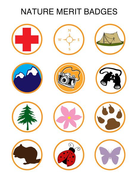 chickduckgoose nature merit badges