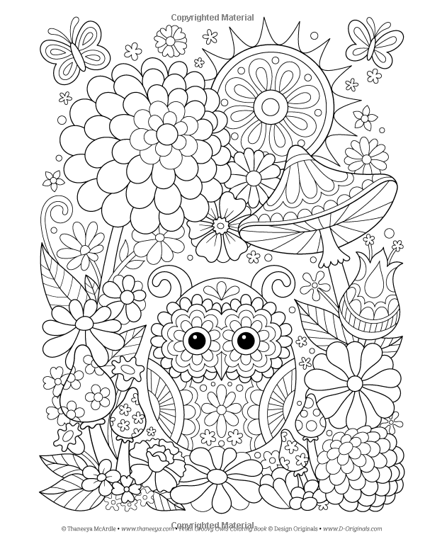Amazon Groovy Owls Coloring Book Is Fun 9781497202078