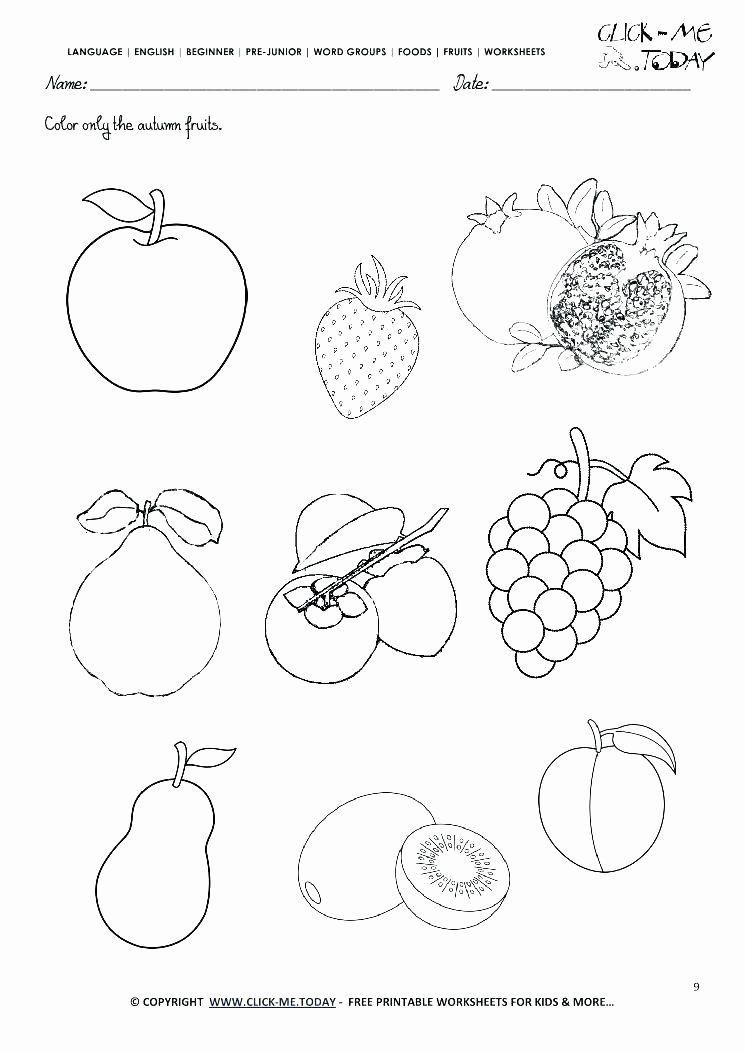 Apple Worksheets Kindergarten Unique Kindergarten Readiness Worksheets Activities Fall Kindergarten Worksheets Autumn Fruits Art Worksheets Printables Kindergarten art worksheets