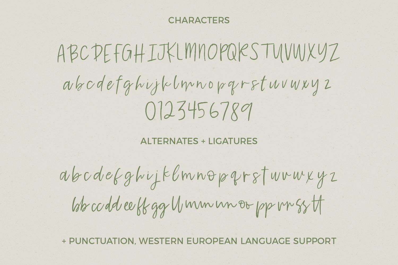 Key Largo Brush Script by BeckMcCormick on @creativemarket #excelwordaccessetc