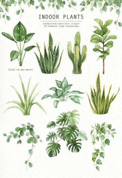 Best Plants Watercolor Indoor 64+ Ideas -   17 indoor plants Watercolor ideas