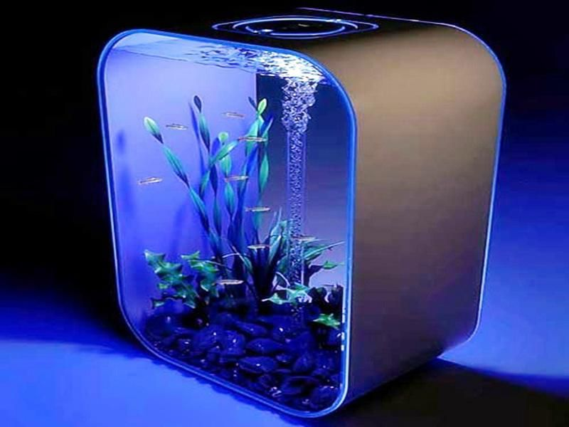 how to make cool fish tank decorations