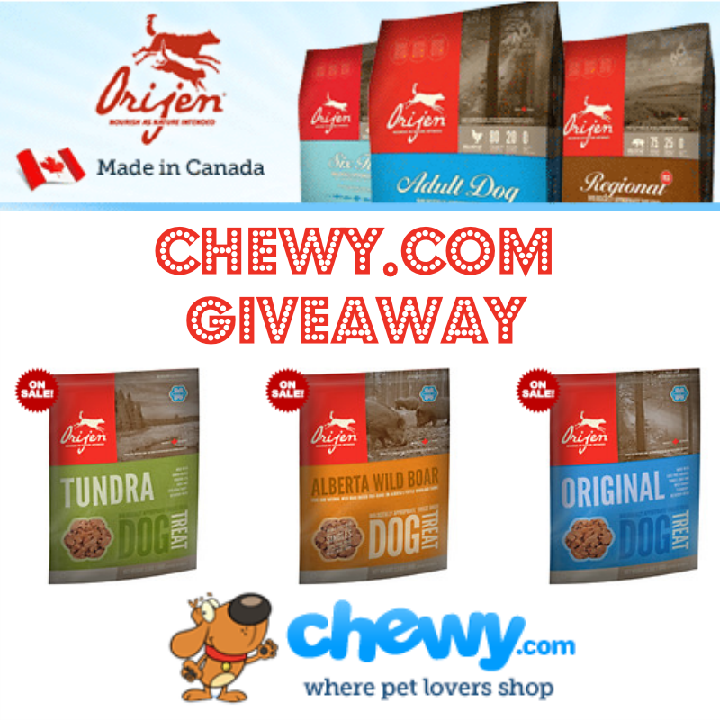 Special Delivery Giveaway Pet websites, Pets