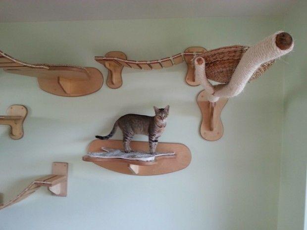 parcours pour chats par goldtatze pet friendly chat. Black Bedroom Furniture Sets. Home Design Ideas