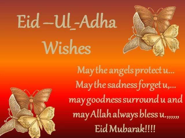 Happy eid to all my friends arifa pinterest happy eid happy eid to all my friends eid ul adha messageseid m4hsunfo