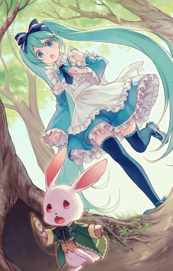 Alice in Wonderland ainme