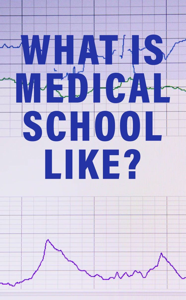 What Is Medical School Like? An Expert Explains the