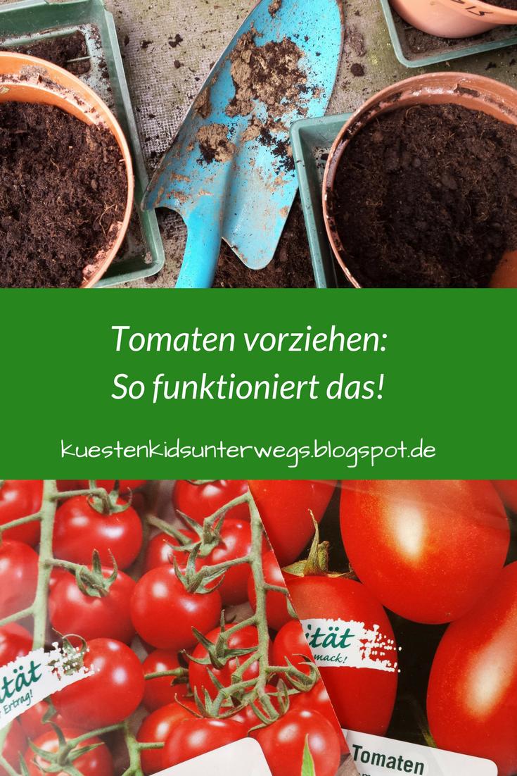 Unterwegs Im Garten Tomaten Vorziehen Tomaten Pflanzen Garten Pflanzen