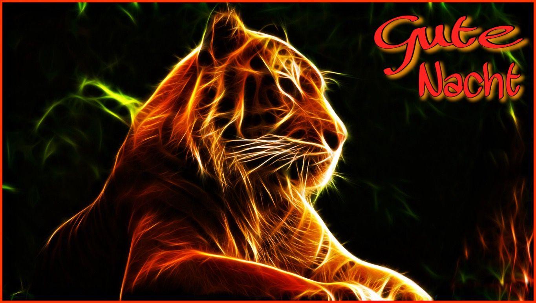 Gute Nacht Tiger