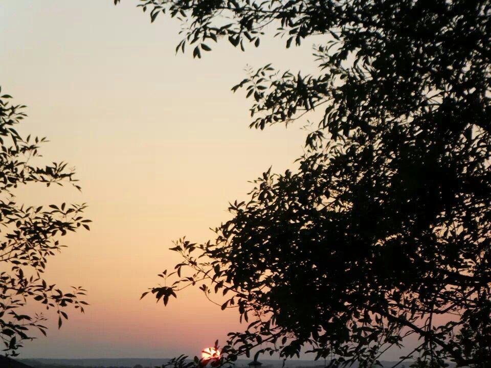 Desde el mismo cielo, en Killen Texas,by , Maria Nuñez