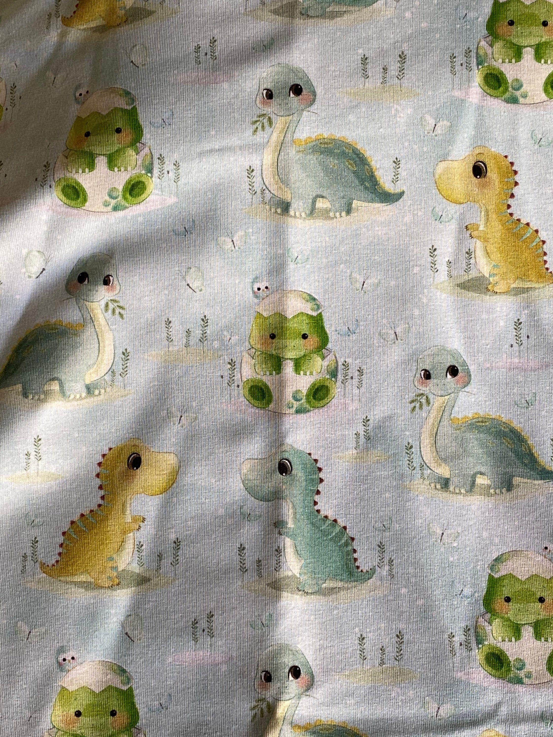 Dinosaur sweatshirt baby dino jumper 1st birthday gift