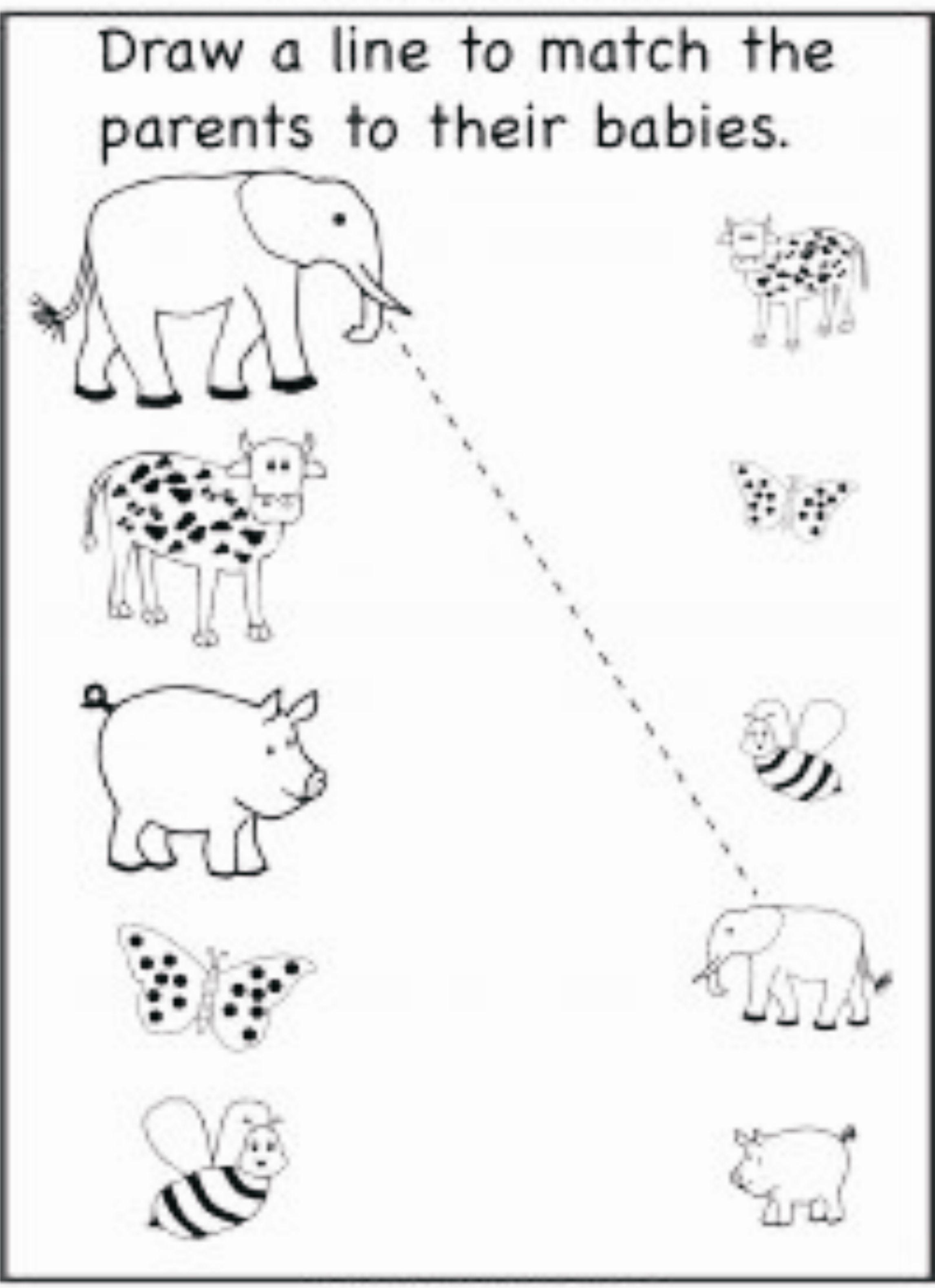 Preschool Skill Match With Same Pair