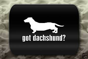 I am dreaming of being a dachsund mommy!
