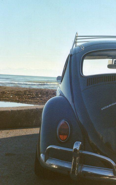 maggiolino | Tumblr