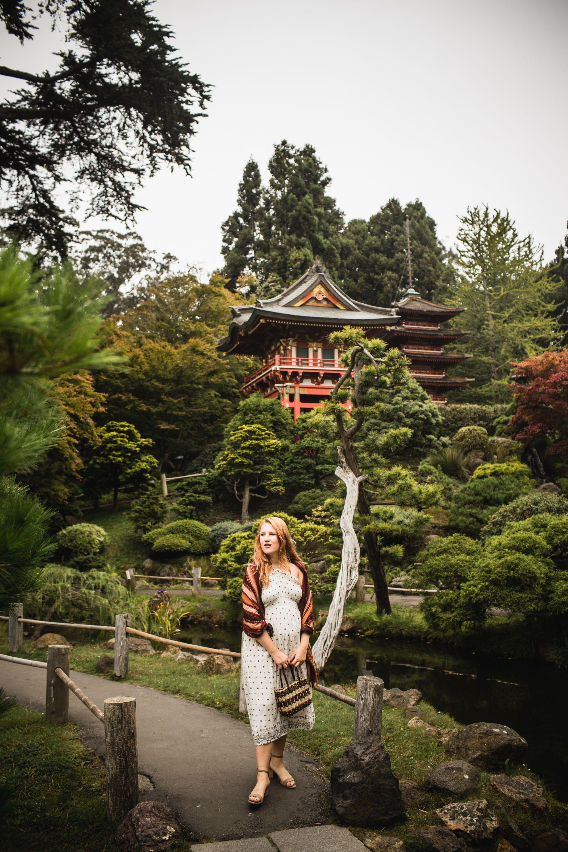 Tips For Visiting The San Francisco Japanese Tea Garden in 2018 ...