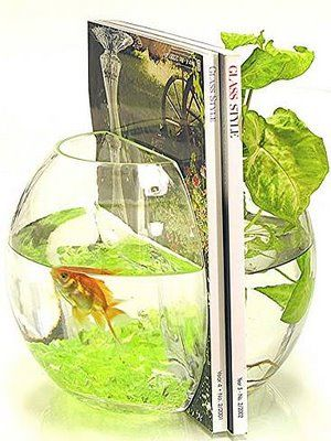 fish bowl book ends