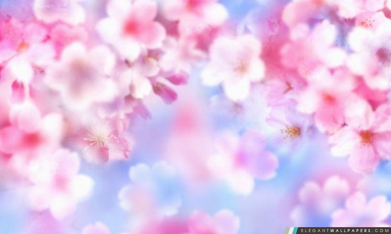 fleurs fond d\u0027écran roses , Recherche Google