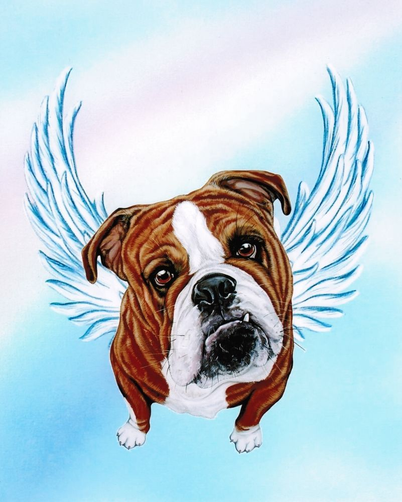 English Bulldog Angel Art Bull Dog Memorial Painting Rainbow