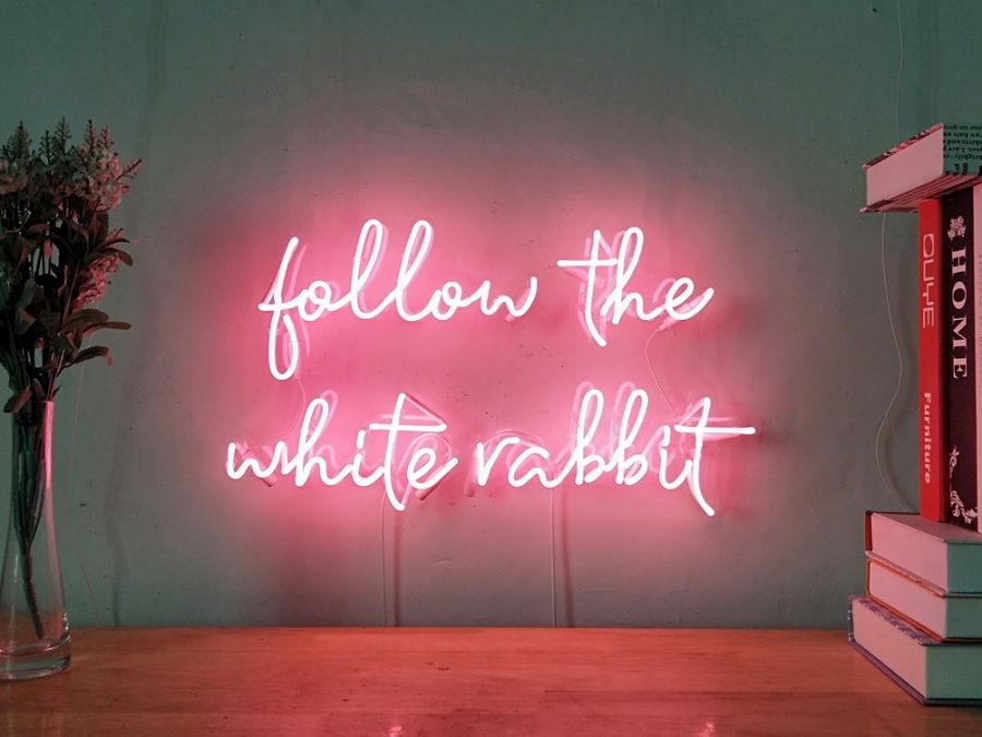New Follow The White Rabbit Neon Sign For Bedroom Home Decor Artwork With Dimmer
