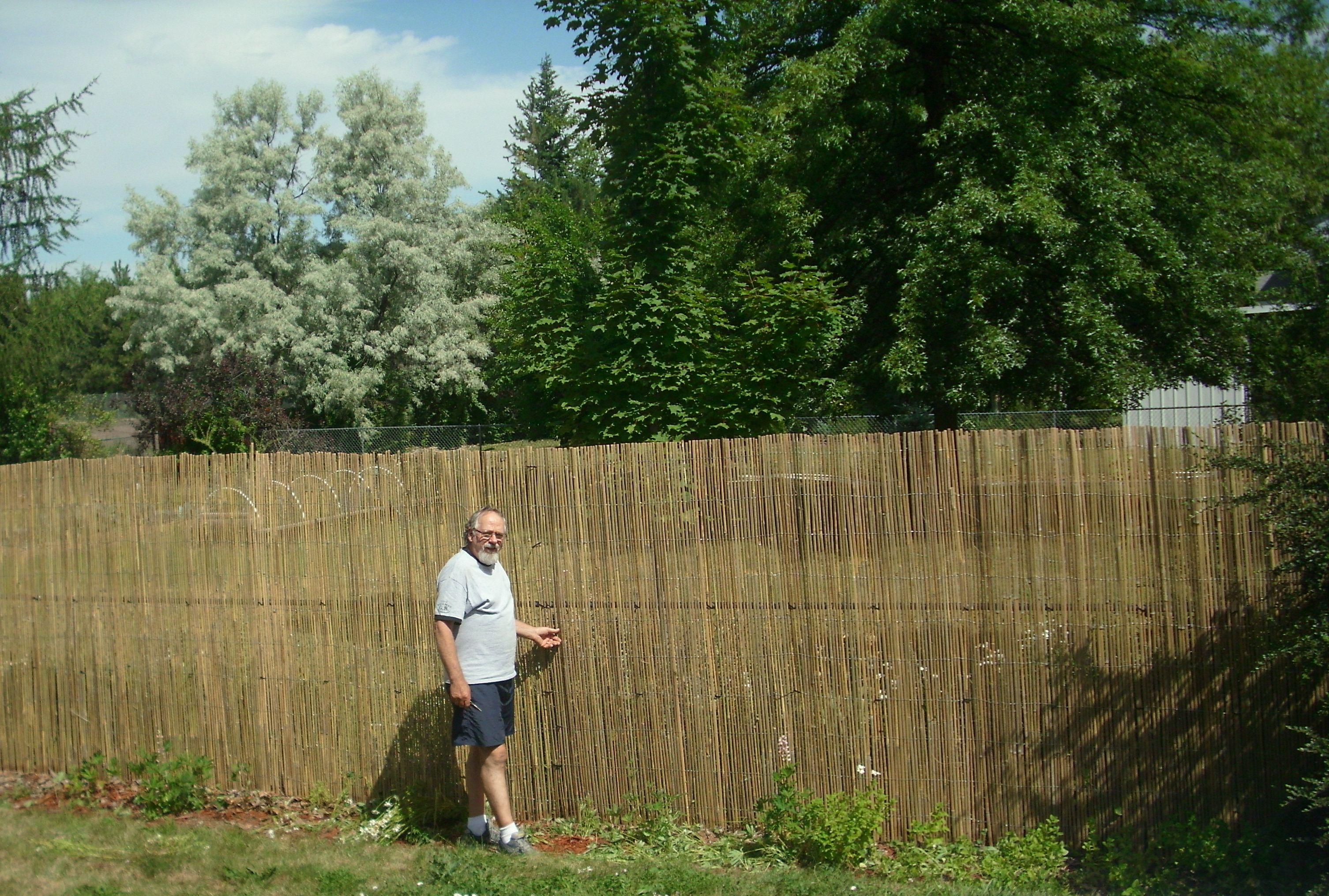 We Put Rolls Of Split Bamboo Fencing Over Our Short Chain Link