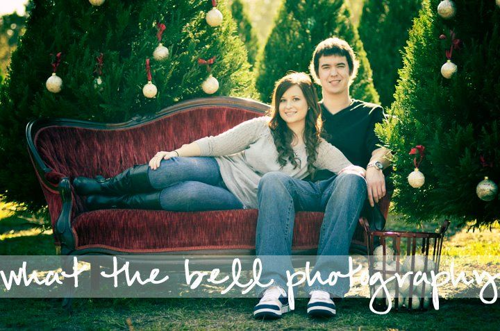 Cute Couple Pic Could Also Have Kids Peeking Over Their Shoulder Great Time To Use Green Sofa Christmas Portraits Christmas Tree Farm Christmas Photography