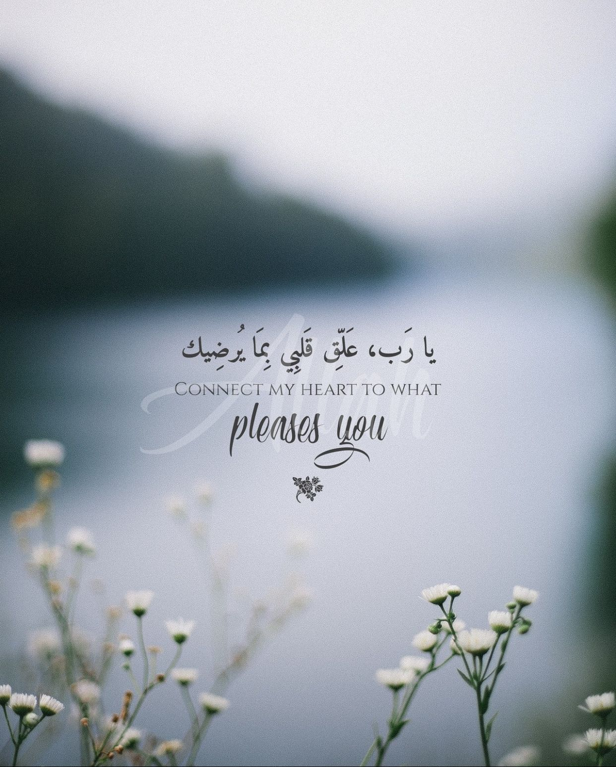 Pin by salwa.el on Quran Verses & Islamic Quotes  Islamic quotes