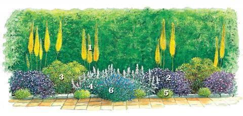 schmale beete effektvoll bepflanzen garten pinterest pflanzen garten und garten ideen. Black Bedroom Furniture Sets. Home Design Ideas