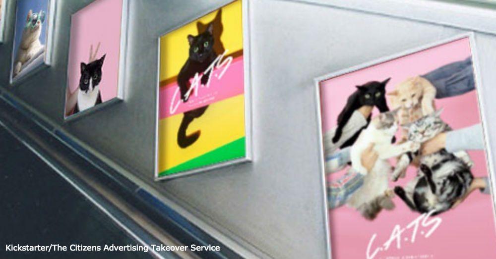 Paws Itive Pro Purr Ganda Cats Take Over Advertising In London Underground Pet Advertising Pet Adoption Cat Adoption