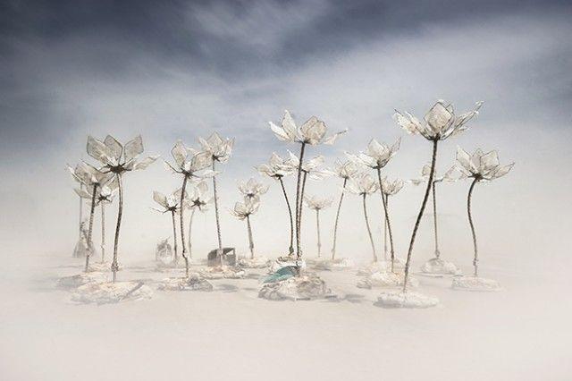 - Burning Man 2014 - – Fubiz™