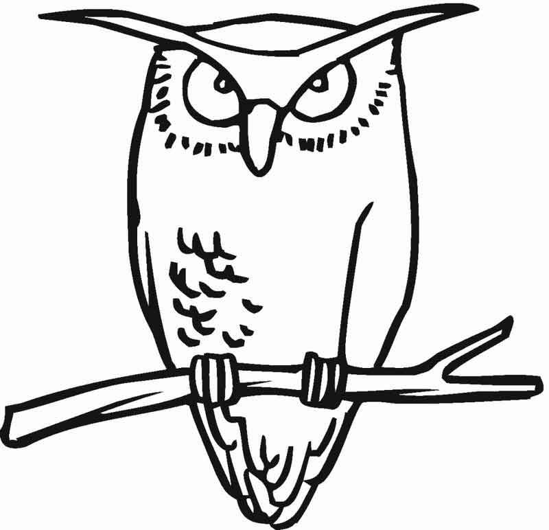 Great Horned Owl Coloring Page In 2020 Owl Coloring Pages