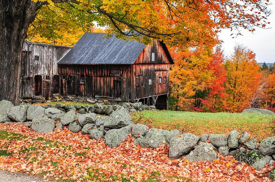 Rustic Barn - New Hampshire Autumn Scenic Photograph by Thomas ...