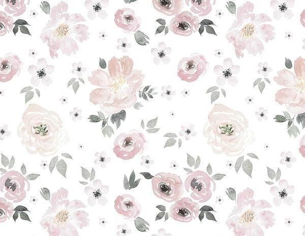 Jolie Wallpaper