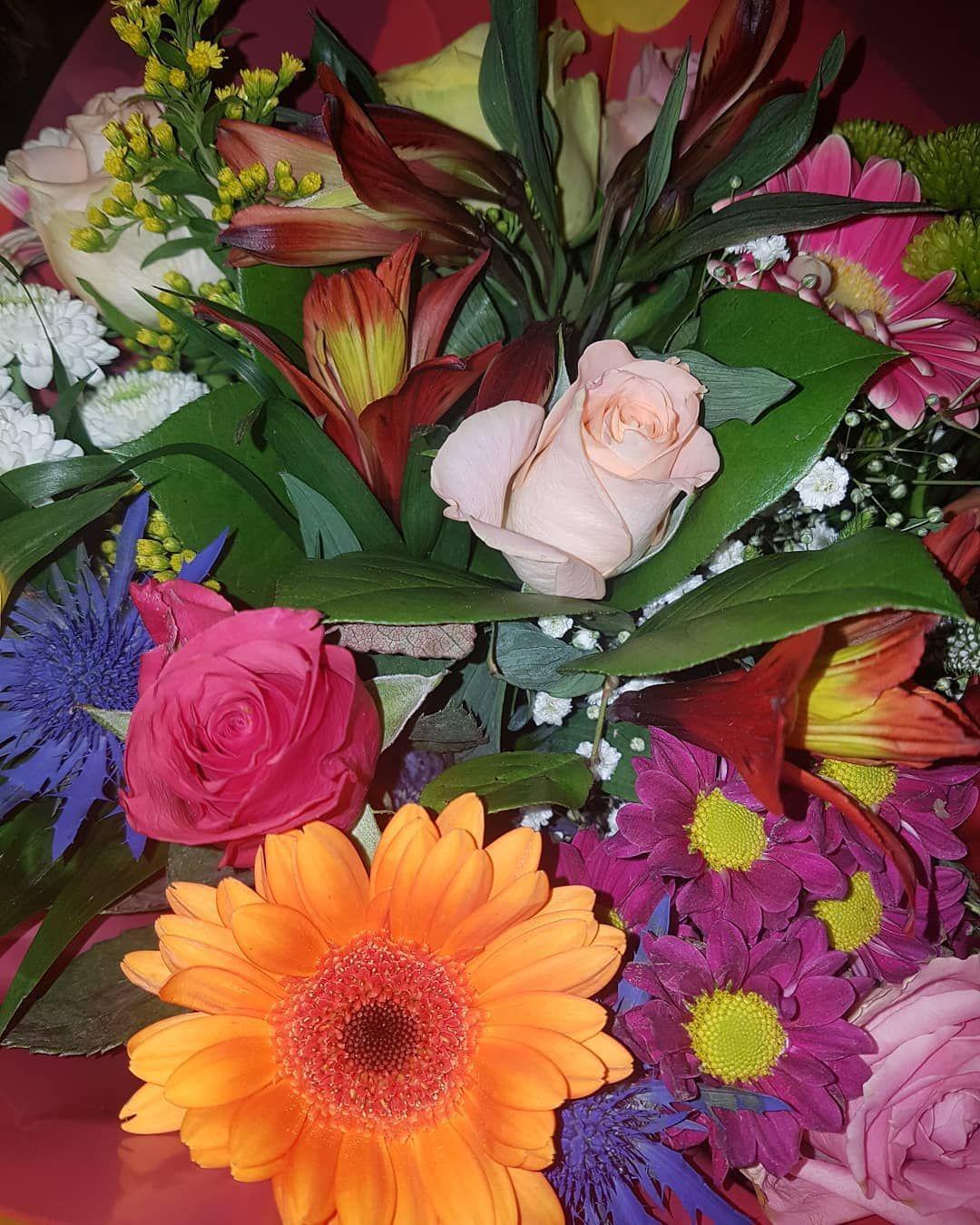 Mazzo Di Fiori Margherite.Fiori Flowers Blumen Flores Colours Colori Farben