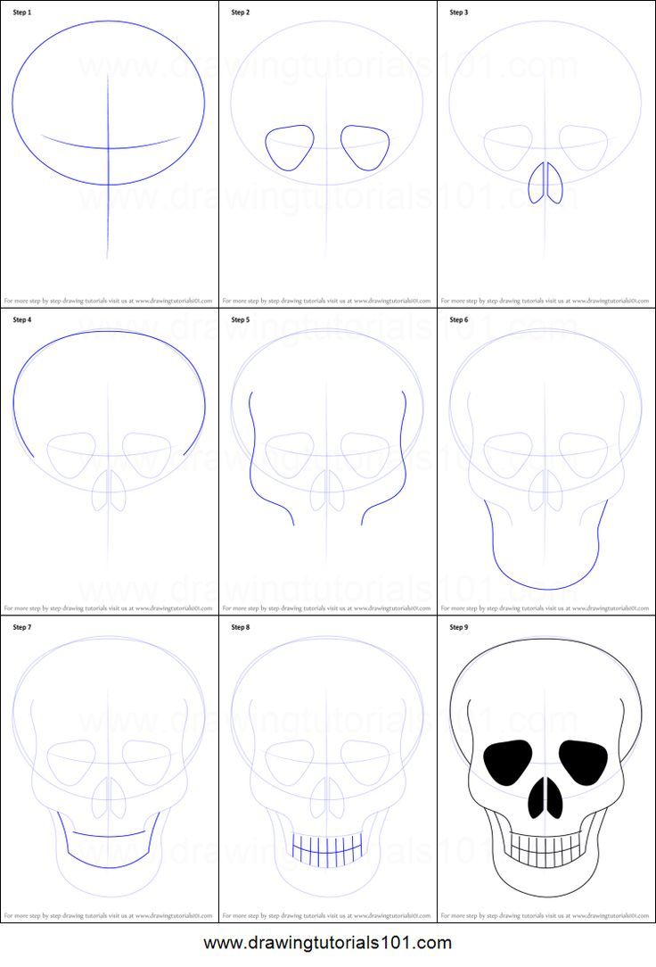 How to Draw Skull Easy printable step by step drawing sheet