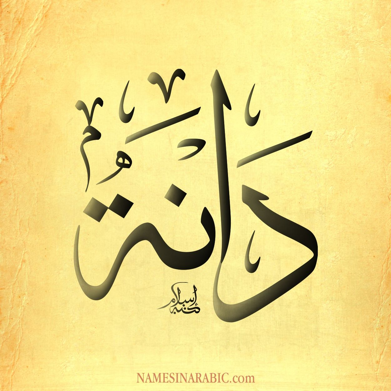 Image Result For دانه مزخرف Calligraphy Name Arabic Calligraphy Islamic Art