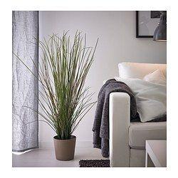 fejka plante artificielle en pot herbe master bedroom pinterest plantes artificielles. Black Bedroom Furniture Sets. Home Design Ideas