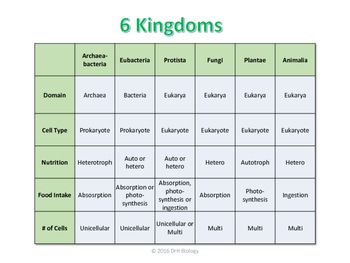 6 Kingdoms Chart | bio | Lab safety activities, Goal setting